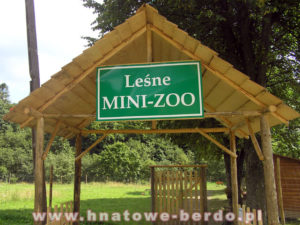 Leśne Mini Zoo